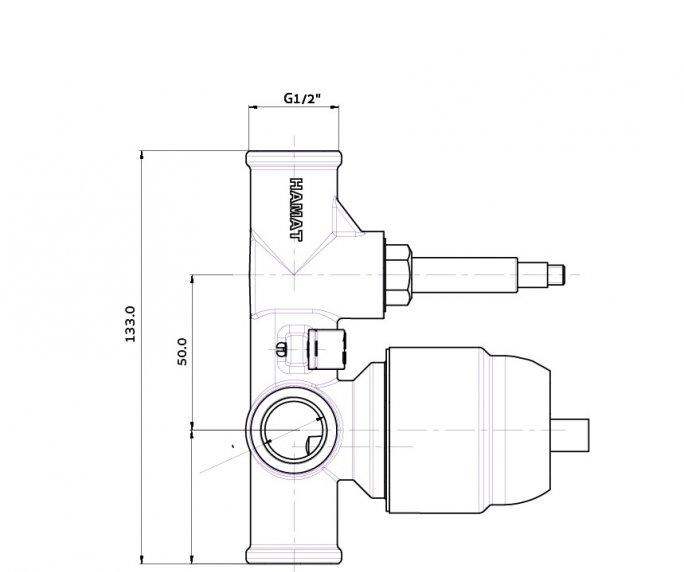 גוף פנימי 4 201678 diagram